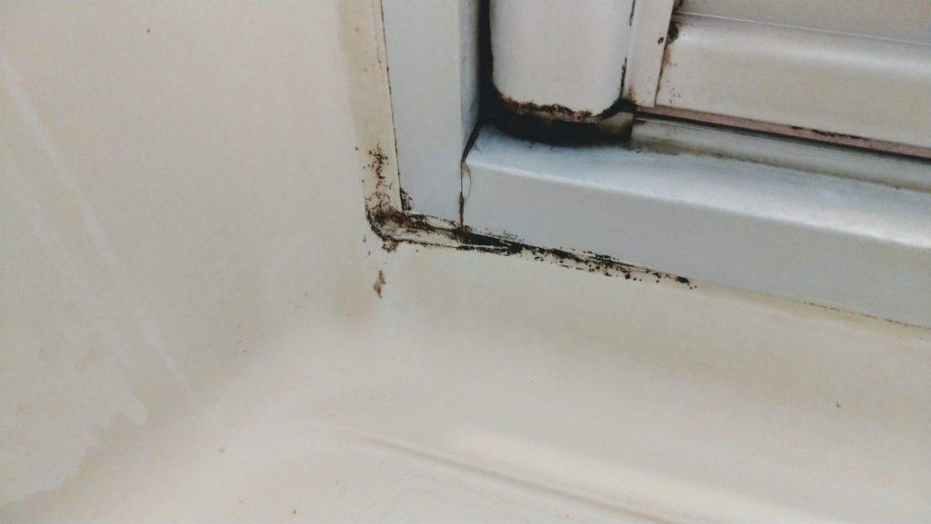 bath mold remover9